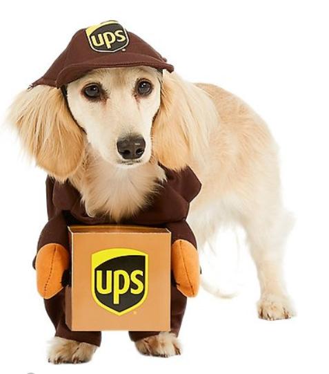 UPS Guy Dog Halloween Costume