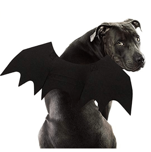 Batwings Dogs Halloween Costume