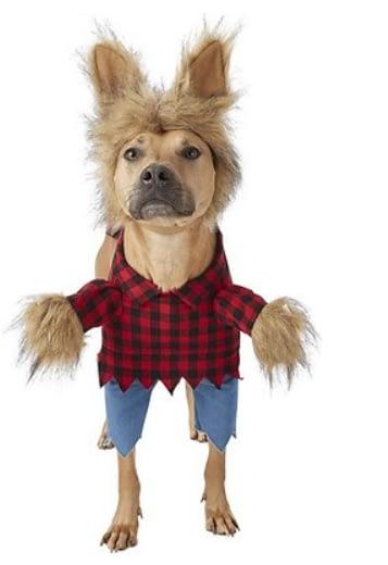 Werewolf Dog Halloween Costume