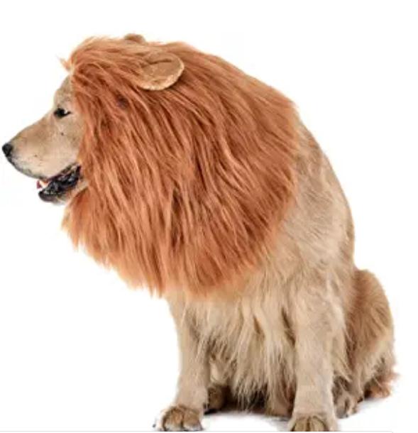 Lions Mane Dog Halloween Costume