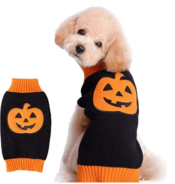 Halloween Dog Sweater